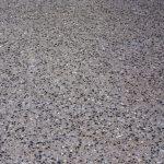 Mangrove floor